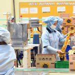 Software ERP Industri Manufaktur